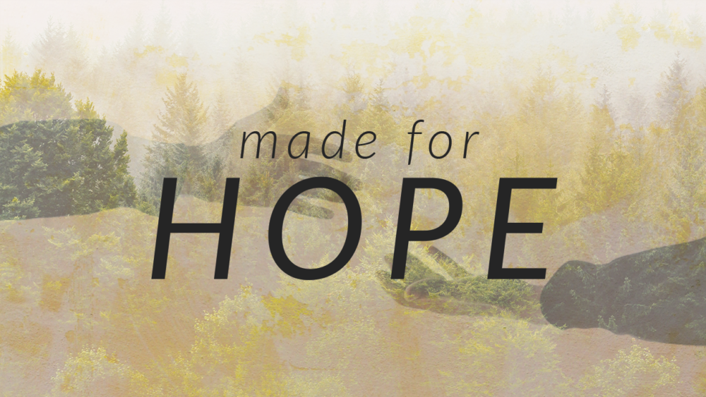 Made For Hope – Part 5 – A Hope That Gives Life to Dead Things